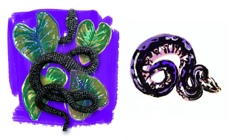 serpent-illustration